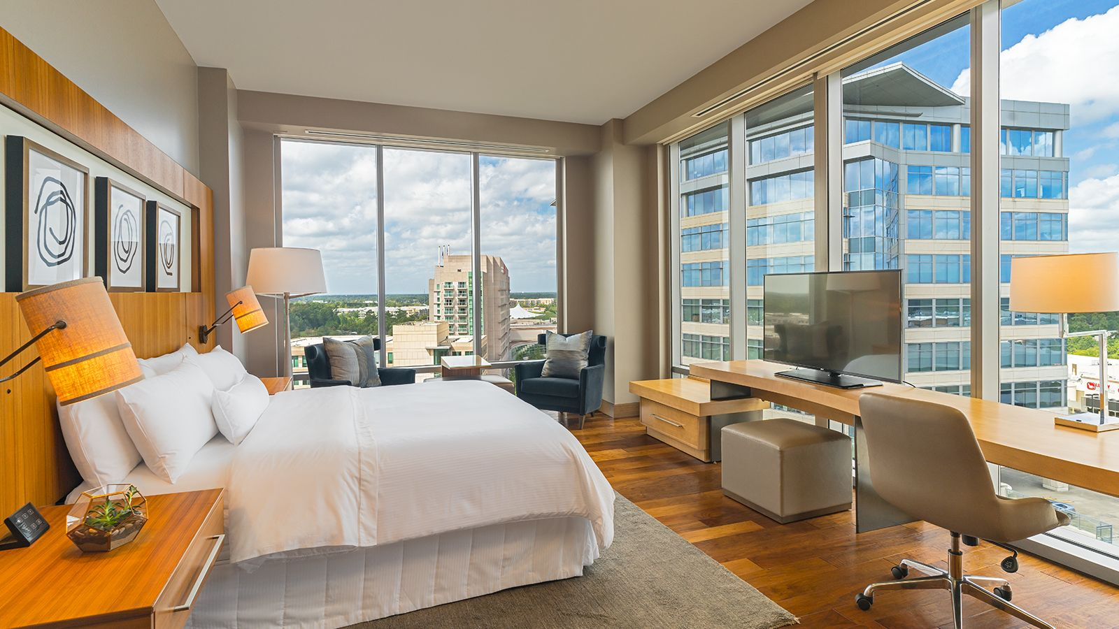 hotel in the woodlands - premium king